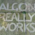 Algon Really Works Paving