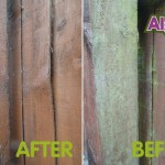 Before_After Algon Fencing