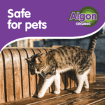 FACEBOOK Safe for pets Serie 1-2